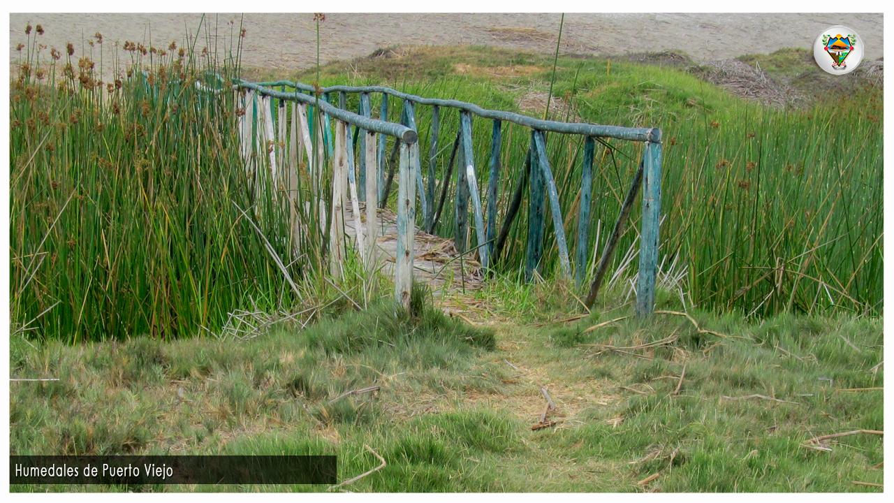 Humedales de Puerto VIejo